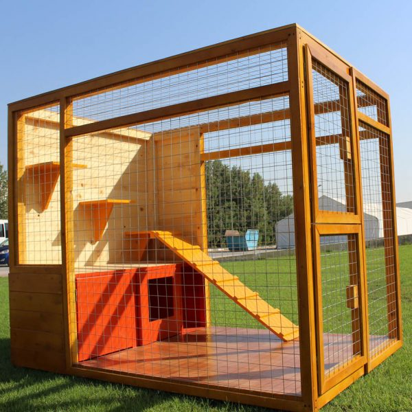 cat house with fenced play area uae