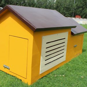 Dog House Dubai DH4001
