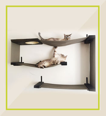 Mister-Per-Cat-Shelves