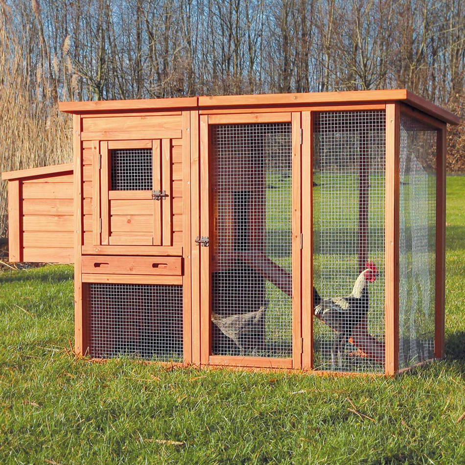Chicken Coop With Flat Roof