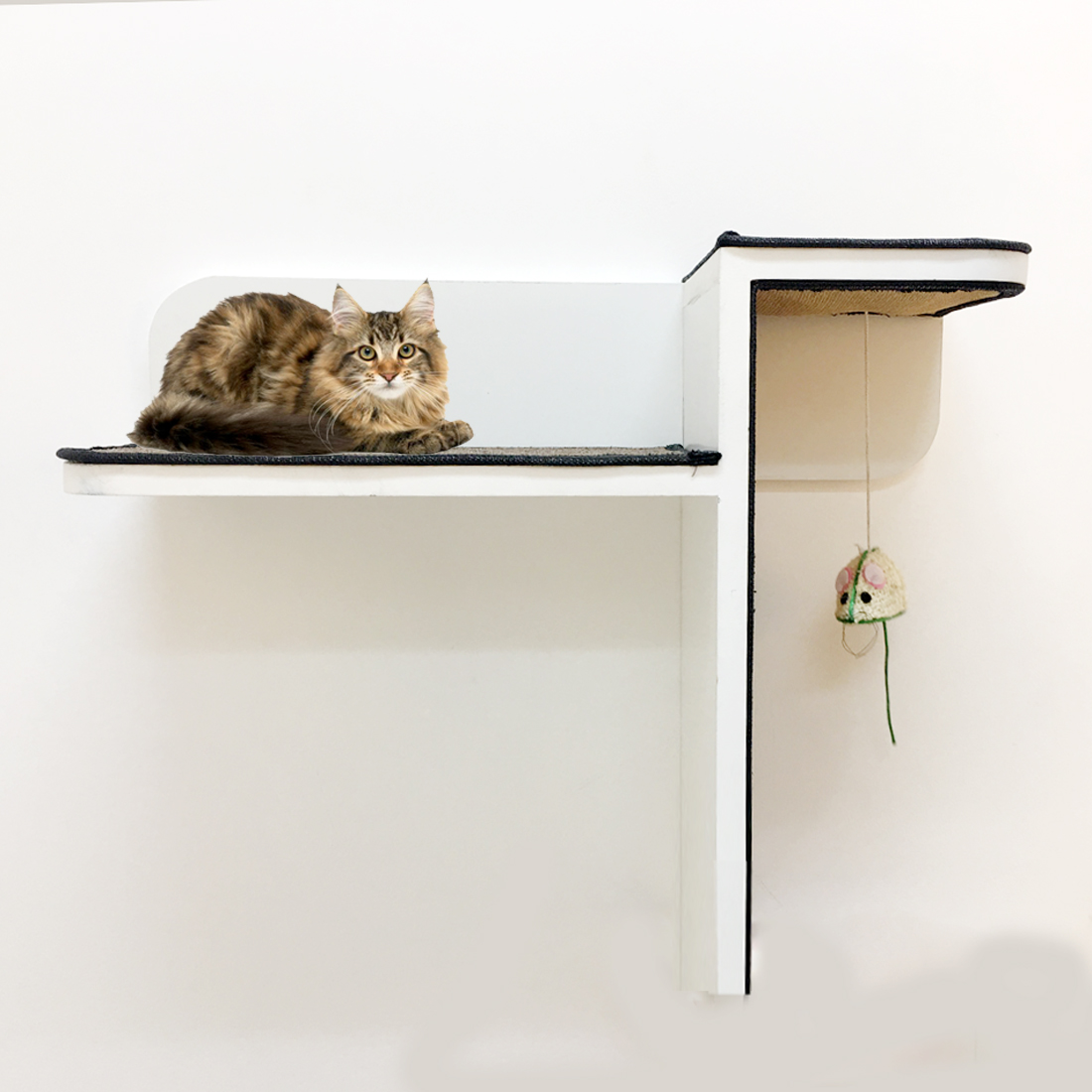 Cat climbing wall shelves best cat shelves for sale in dubaiuae cat climbing shelves dubai amipublicfo Image collections