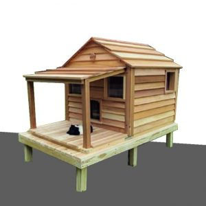 cat house dubai sale