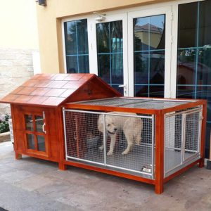 dog house in abu dhabi for sale