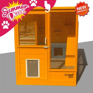 cat-house-abu-dhabi-2