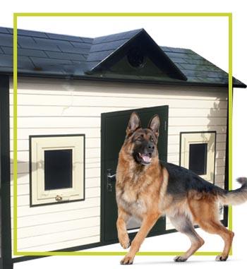 dog house home page
