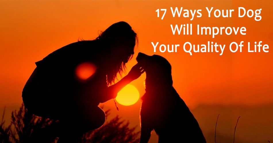 17-Ways-Your-Dog-Will-Improve-Your-Quality-Of-Life