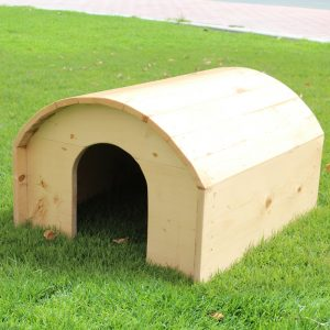 Cat House UAE