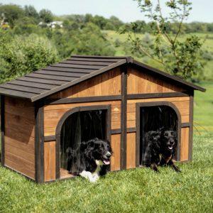 Double Dog House in Dubai