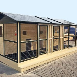 dog kennels uae