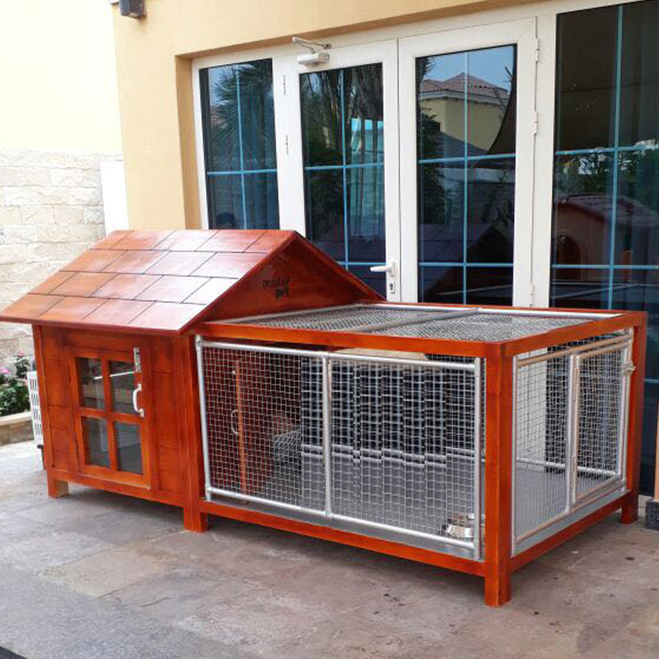 Dog House In Abu Dhabi For