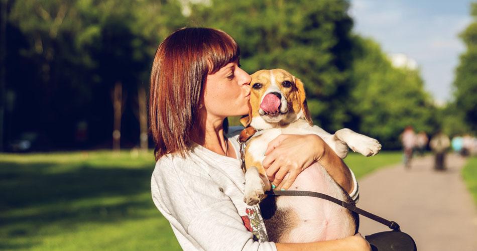 Dog Friendly Places in Dubai